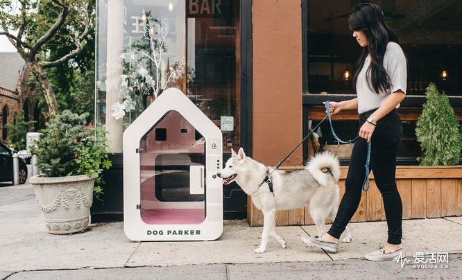 Dog-Parker-1