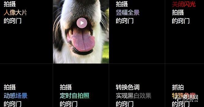QQ图片20170612165925
